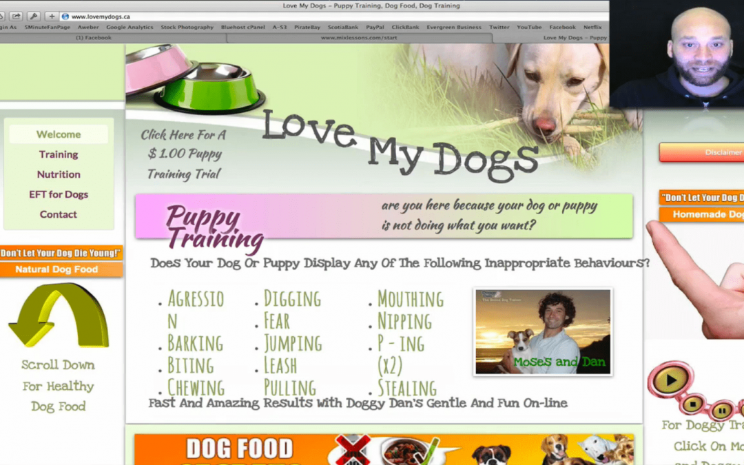 Website Analysis For LoveMyDogs.ca